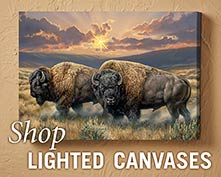 Shop Lighted Canvases