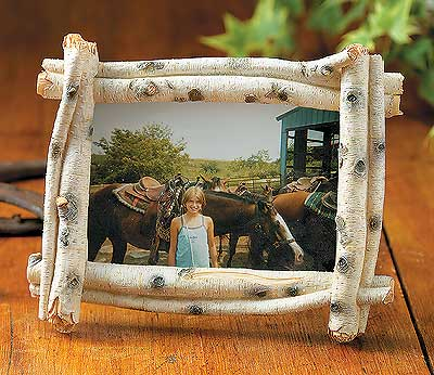 Birch Log Picture Frames | Wild Wings