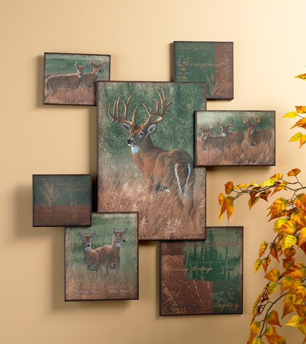 5373101565: Natures Plan - Whitetail Wall Collage