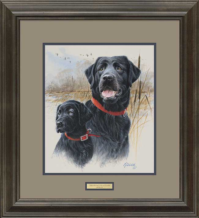Great Retriever-Black Lab and Pintails Art Print by Jim