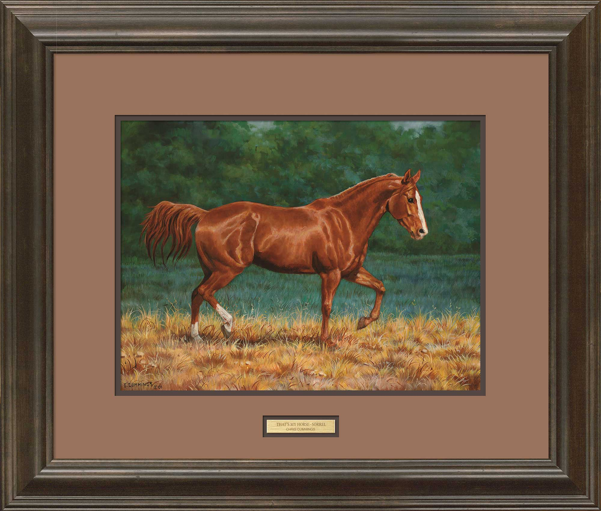 Horse Art; Quarter Horse-Sorrel Framed Print by C. Cummings | Wild Wings