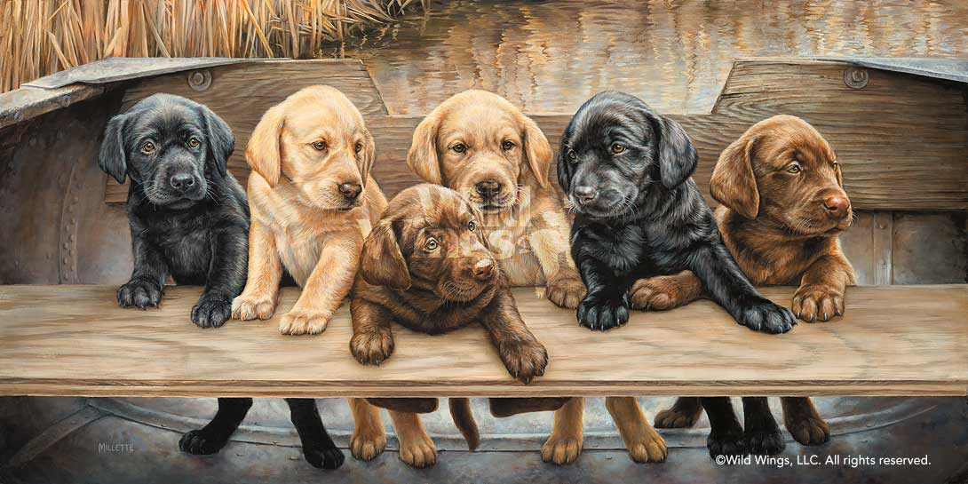 Puppies Painting More Hands On Deck By Rosemary Millette Wild Wings