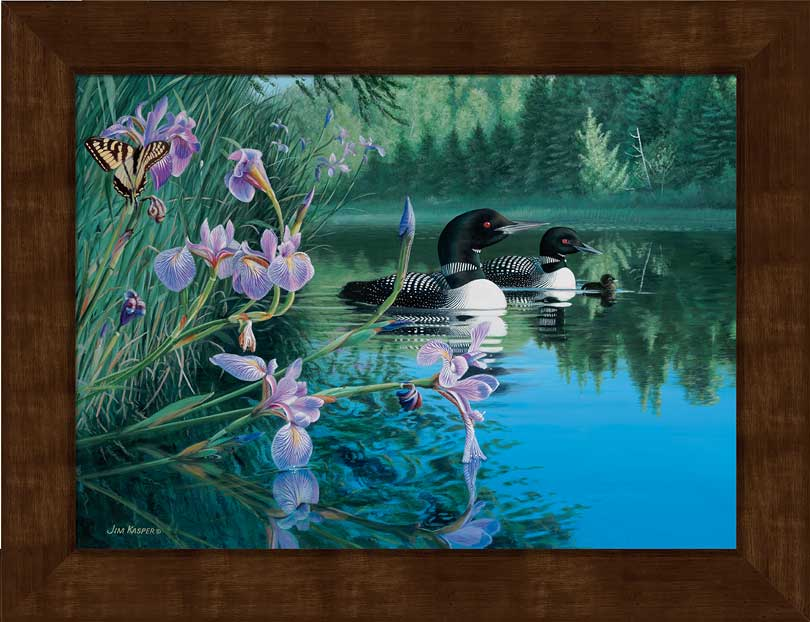 Small Framed Loons Canvas Art Print; Iris Cove by Jim Kasper | Wild ...