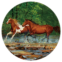 spring-creek-run-horses-cummings-coaster-4209101281t.JPG